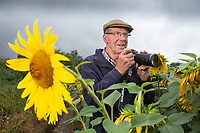 South :Lincolnshire Farmer and photographer Nicholas Watts in his field of sunflowers at Vine House Farm, Deeping, St Nicholas, Lincolnshire <br /> &copy;Tim Scrivener Photographer 07850 303986<br />      ....Covering Agriculture In The UK....
