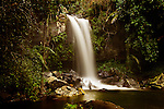 Curtis Falls on the Cedar Creek, Joalah National park, Mount Tamborine, Queensland, Australia.  Curtis Falls is a definite highlight of this beautiful part of Queensland.  This shot was captured in Oct 2010 and local guides informed me the falls were flowing better than they ever had in the last 20 years.  A great time to get an image.