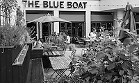 """Chiswick. Greater London. The Public House, """"The Blue Boat""""  Fulham Reach RC. Sunday.  24.07.2016  [Mandatory Credit: Peter Spurrier/Intersport-images.com]"""