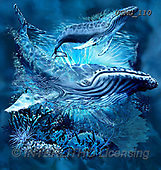 Steven-Michael, REALISTIC ANIMALS, REALISTISCHE TIERE, ANIMALES REALISTICOS, paintings+++++,USMG110,#a#, EVERYDAY ,puzzles,maritime,underwater,wales ,puzzles