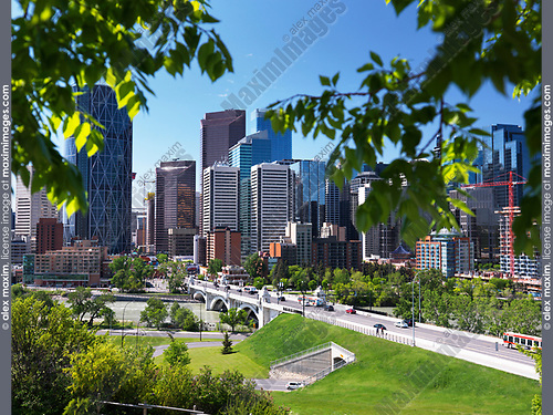 Calgary city downtown skyline with Centre Street Bridge over Bow river artistic scenery framed by green tree leaves. Calgary, Alberta, Canada 2017.