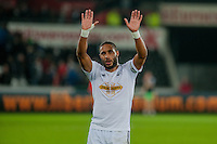 Saturday 29th November 2014<br /> Pictured: Ashley Williams leaves the field <br /> Re: Barclays Premier League Swansea City v Crystal Palace at the Liberty Stadium, Swansea, Wales,UK