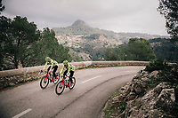 Edward THEUNS (BEL/Trek-Segafredo) &amp; Matteo MOSCHETTI (ITA/Trek-Segafredo)<br /> <br /> Team Trek-Segafredo men's team<br /> training camp<br /> Mallorca, january 2019<br /> <br /> &copy;kramon