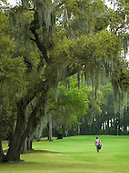 A man walks through a golf course surrounded by mossy Live Oaks.