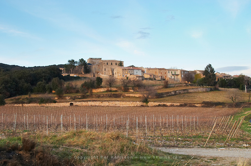 Caussiniojouls village. Faugeres. Languedoc. France. Europe. Vineyard.