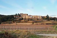 Caussiniojouls village. Faugeres. Languedoc. France. Europe. Vineyard.