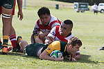 Replacement halfback Gregor Christie dives over to score the first of his two match winning tries. Counties Manukau Premier Counties Power Club Rugby game between Karaka and Pukekohe, played at the Karaka Sports Park on Saturday March 10th 2018. Pukekohe won the game 31 - 27 after trailing 5 - 20 at halftime.<br /> Photo by Richard Spranger.