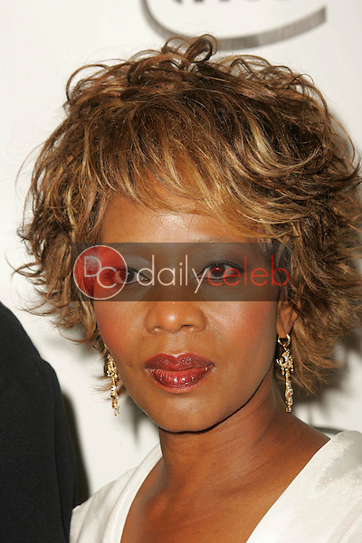 Alfre Woodard<br />arriving at the 2006 Producers Guild Awards, Universal Hilton Hotel, Universal City, CA 01-22-06<br />Dave Edwards/DailyCeleb.com 818-249-4998