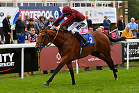Winner of The Lascar Ruby Anniversary Handicap, Scorching ridden by Joshua Bryan and trained by Andrew Balding  during Afternoon Racing at Salisbury Racecourse on 18th May 2017