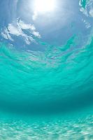 Looking up towards the sky through<br /> clear Caribbean water<br /> Honeymoon Beach<br /> Virgin Islands National Park<br /> St. John<br /> U.S. Virgin Islands