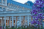 Jardin du Palais Royal Paris France; Palace and gardens with 17th century arcades