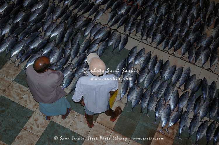 Two customers looking at fish for sale at a market, Male, Maldives.