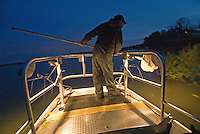An Ohio Division of Wildlife worker watches for saugeye at night as they float to the surface after being shocked. The fish is part of a three year study of fish habitat at Hoover Reservoir.