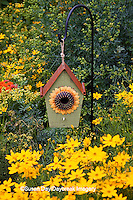 63821-205.05 Sunflower birdhouse in garden with Threadleaf Coreopsis (Coreopsis verticillata 'Golden Showers' Common Rue (Ruta graveolens) and Butterfly Milkweed (Asclepias tuberosa)  Marion Co. IL