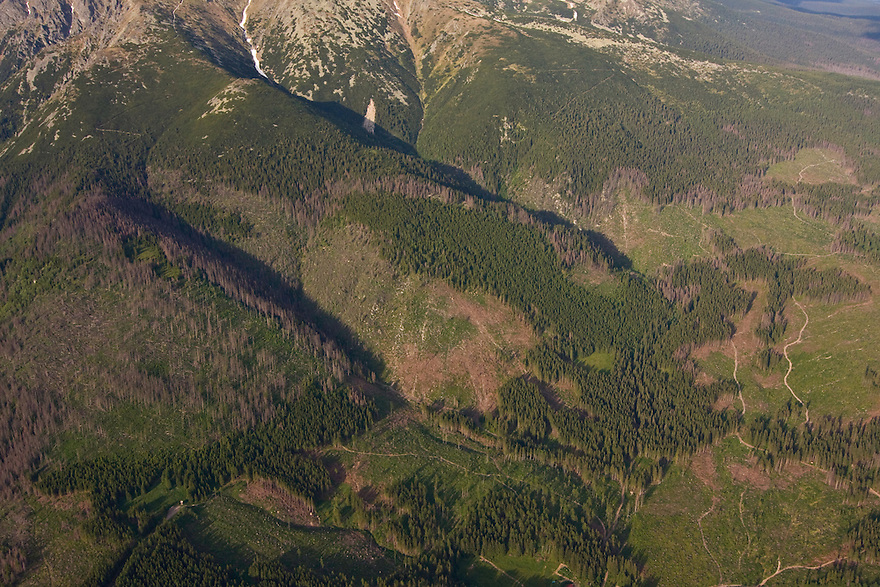 Aerial view of clear cuts in spruce forest at the foothills of Mount Krivàn, national symbol of Slovakia. High Tatras, Slovakia. June 2009. Mission: Ticha