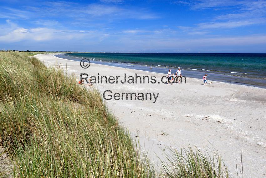 Denmark, Jutland, Ålbæk: View over sand dunes to white sand beach   Daenemark, Juetland, Aalbæk: einsame, lange Straende laden zum Spaziergang ein