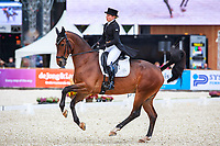NZL-Megan Heath rides Camelot during the Second Day of Dressage. 2017 NED-Military Boekelo CCIO3* FEI Nation Cup Eventing. Friday 6 October. Copyright Photo: Libby Law Photography