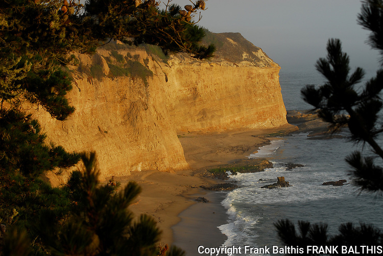 Greyhound Rock beach