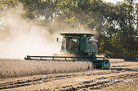 63801-07314 Soybean harvest with John Deere combine in Marion Co. IL