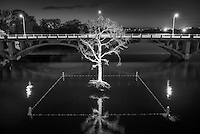 Thirst Tree in black in white