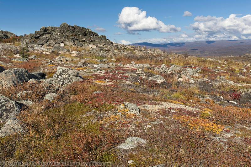 Autumn on Finger Mountain, Interior, Alaska