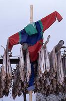 Europe/Norvège/Iles Lofoten/Sorvager : Séchoir à skrei-cabillaud et épouvantail