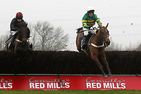 Race winnder Malt Master ridden by A P McCoy (R) in jumping action in the Connollys Red Mills Horsecare Cubes Novices Chase