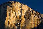 Golden sunrise light on sheer granite wall cliff face of El Capitan, Yosemite National Park, California