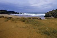 Europe/France/Bretagne/56/Morbihan/Belle-île/Port-Donnant: La plage et les dunes