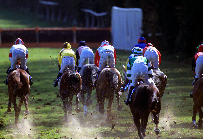 Group of horses racing on soft grounds as they approach steeplechase fence