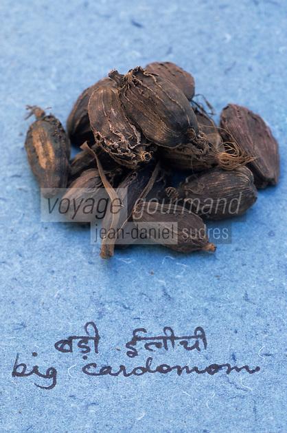 Asie/Inde/Maharashtra/Bombay : Les épices dans la cuisine indienne - Cardamome