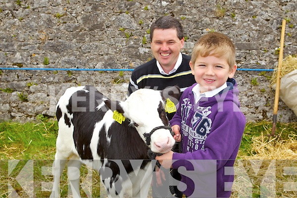 Maurice and Gearoid Harty, Ballyhigue at the Kingdom County Fair at Ballybeggan on Sunday.