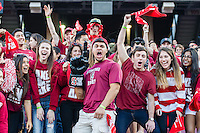 STANFORD, CA - NOVEMBER 23, 2013: Fans celebrate during Stanford's game against Cal. The Cardinal defeated the Bears 63-13.