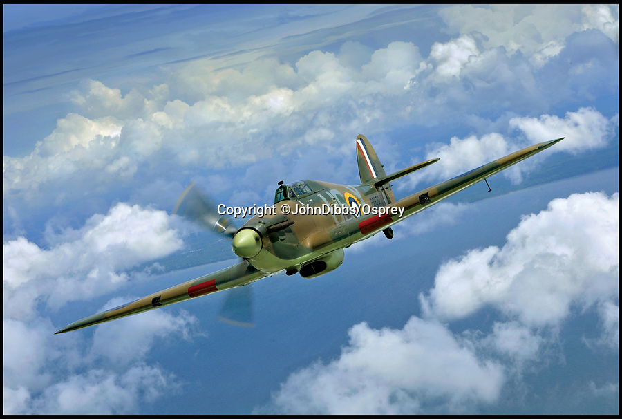 BNPS.co.uk (01202 558833)<br /> Pic: JohnDibbs/Osprey/BNPS<br /> <br /> This Hurricane now lives in Australia.<br /> <br /> Last of the Few - A photographer's stunning new book is a tribute to the last Hawker Hurricane's - the true workhorse of the Battle of Britain.<br /> <br /> Only 13 WW2 Hurricanes are still airworthy today, compared to over 60 of their more glamorous counterpart the Spitfire.<br /> <br /> But during the Battle of Britain there were in fact twice as many Hurricane's as Spitfires taking on Hitlers Luftwaffe in the skies over southern England.<br /> <br /> The Hurricane may be viewed as less glamorous than the Spitfire, but these stunning photographs reveal just how majestic it was in full flight.<br /> <br /> Photographer John Dibbs has got up close and personal to the legendary fighter planes in order to capture them like never before.<br /> <br /> His 10 year quest for surviving Hurricanes took him all over the world and he photographed them in England, France, the United States and New Zealand.<br /> <br /> Using the skill and experience of highly experienced RAF and civilian pilots, Mr Dibbs was able to fly to within 15ft of some of the last remaining Hurricanes - with breath-taking results.<br /> <br /> There was a fair degree of skill involved as he took the photos from the canopy of a Second World War trainer aircraft which was travelling at 200mph while confronting wind blast.<br /> <br /> The thrilling photos were taken for an a definitive history of the Hurricane which is told by Mr Dibbs and aviation historians Tony Holmes and Gordon Riley in their new book Hurricane, Hawker's Fighter Legend.