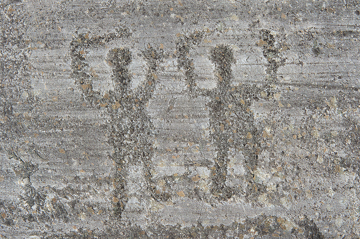 Prehistoric camuni petroglyph rock carvings foppi di