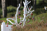 Decorations around the course during Wednesday's Pro-Am of the 2018 Turkish Airlines Open hosted by Regnum Carya Golf &amp; Spa Resort, Antalya, Turkey. 31st October 2018.<br /> Picture: Eoin Clarke | Golffile<br /> <br /> <br /> All photos usage must carry mandatory copyright credit (&copy; Golffile | Eoin Clarke)