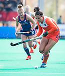 ROTTERDAM - Malou Pheninckx (Ned)  tijdens de Pro League hockeywedstrijd dames, Nederland-USA  (7-1) .   COPYRIGHT  KOEN SUYK