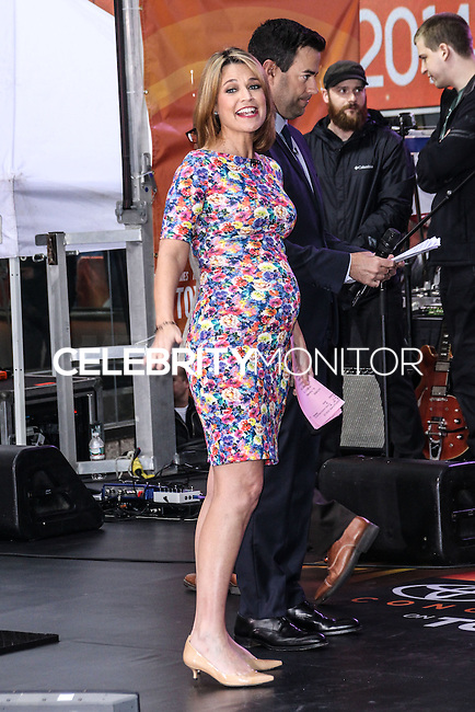 NEW YORK CITY, NY, USA - MAY 23: Savannah Guthrie performs on NBC's 'Today' at the Rockefeller Center on May 23, 2014 in New York City, New York, United States. (Photo by Jeffery Duran/Celebrity Monitor)