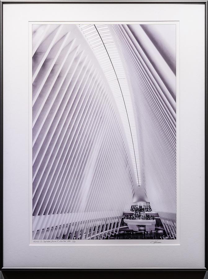 """Framed Size 26""""h x 20""""w, $525<br /> Graphite Nielsen 15 metal frame"""