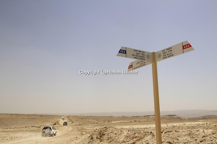 Israel, Negev, the road to Ein Um Tina in Wadi Zarhan