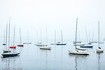 A foggy day on Boston Harbor, Boston, Massachusetts, USA
