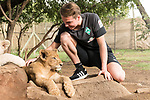07.01.2019, Broederstroom, Johannesburg, RSA, TL Werder Bremen Johannesburg Tag 05 - Besuch Lion and Safari Park<br /> <br /> im Bild / picture shows <br /> Luca Plogmann (Werder Bremen #40)<br /> bei den Loewenbaby´s<br /> <br /> Foto © nordphoto / Kokenge