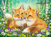 Kayomi, CUTE ANIMALS, LUSTIGE TIERE, ANIMALITOS DIVERTIDOS, paintings+++++,USKH287,#ac#, EVERYDAY
