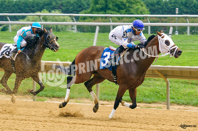 Bootsontheground winning at Delaware Park on 7/28/16