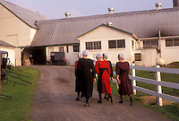 AJ3461, amish, Amish Country, Lancaster County, Pennsylvania, A group of Amish teenage girls walk up a dirt driveway to an Amish barn in Pennsylvania Dutch Country in Lancaster County in the state of Pennsylvania.