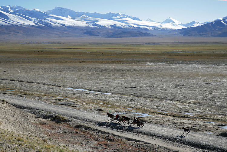 Rural farmers returning from a day in Old Tingiri, Tibet.