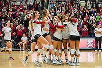 Stanford, CA, November 20, 2013<br /> Stanford Women's Volleytball versus University of Washington, Stanford won 3-0.
