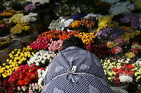 CAPE TOWN, SOUTH AFRICA - JULY 26: A woman sells flowers in Cape Town, South Africa.   (Photo by Landon Nordeman) ..