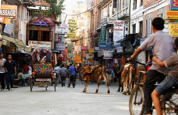 A 'relax' sample of traffic in Nepal.