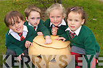 Pupils at Firies Nationals School are making headlines after they grew a very special pumpkin for halloween. The pumpkin is believed to be one of the largest in the county  weighing over 4 stone. .L-R Junior infants pupils with the famous pumpkin .Benjamin Brosnan, Simon Foley, Louise Kennedy and Ri?an Sheedy.